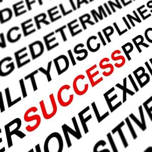 631073-success-factors
